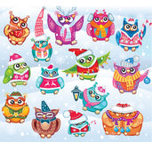 Set of Cute Christmas Owls Royalty Free Stock Photo