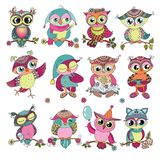 Set of 12 cute colorful cartoon owls. Funny illustration of birds on white background. Can be used for baby shower, kids design, birthday cards, invitations vector illustration