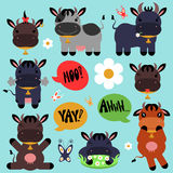 Set of cute cows. Set of cute cartoon cows vector illustration