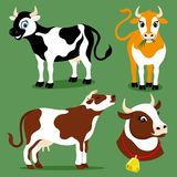 Set of cute cows. Set of cute cows on a green background stock illustration