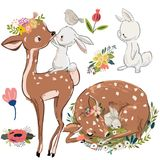 Set with cute deer and hares. Cute fawn and white hares. vector collection Stock Images