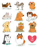 Set of cute dog characters isolated on white Stock Images