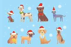 Set of cute dogs in red santas hat. Christmas puppy winter  Stock Image