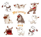 Set of cute dogs for you design Cartoon Stock Images