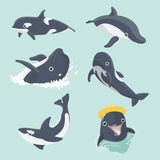 Set of cute dolphins. Set of cute dolphins on pastel background royalty free illustration