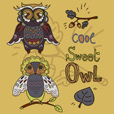 Set of cute doodle owls Royalty Free Stock Images