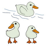 Set of cute duck cartoon Royalty Free Stock Image