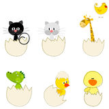 Set of cute Easter eggs Royalty Free Stock Photos