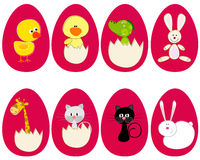 Set of cute Easter eggs Stock Photography