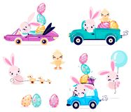 Set of cute Easter rabbits with Easter eggs and chicken. Transport with Easter bunny. Collection of Easter bunny isolated on white background. Vector stock illustration