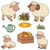 Set of cute farm animals and objects, vector family sheep Stock Photography