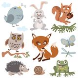 Set of cute forest animals cartoon vector. Set of cute forest animals retro vintage colors vector cartoon stock illustration