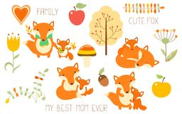 Set of cute fox with baby Royalty Free Stock Photos