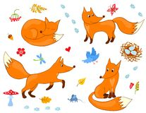Set of cute foxes Stock Photo