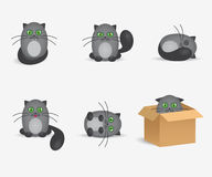 Set of cute gray cats with geen eyes. Vector cats flat icons set. Cute gray cats with geen eyes vector illustration
