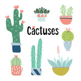 Set of cute hand drawn cactus and succulent plants in pots. Isolated floral vector objects. Cartoon illustrations. Set of cute hand drawn cactus and succulent Royalty Free Stock Photography