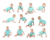 Set of cute little baby crawling on white royalty free stock photography