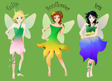 Set of cute little fairies in flower dresses isolated on green. Cartoon illustrated set of cute little fairies in flower dresses isolated on green royalty free illustration