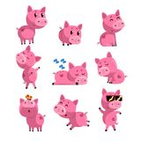 Set of cute little pig in different actions. Sleeping, dancing, walking, sitting, jumping. Cartoon character of pink royalty free illustration
