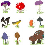 Set of cute mushroom line art Stock Images