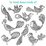 Set of cute ornamental hand drawn birds Stock Photos