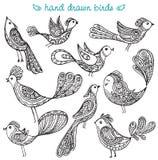 Set of cute ornamental hand drawn birds. Set of cute ornamental  hand drawn birds in black and white style Stock Photos