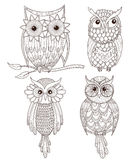Set of cute owls. Set of cute hand draw owls Royalty Free Stock Images
