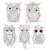 Set of cute owls. Set of cute hand draw owls Stock Image