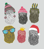 Set of cute owls in costumes Royalty Free Stock Images
