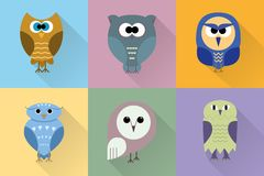 Set of cute owls of different kinds in flat design. stock illustration