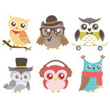 Set of cute owls. Stock Images