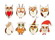Set of cute owls. Vector cartoon owls and owlets birds isolated on white background. Stock Photos