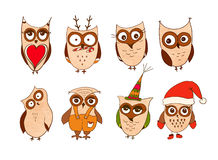 Set of cute owls. Vector cartoon owls and owlets birds isolated on white background. Stock Image