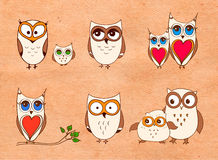 Set of cute owls. Vector cartoon owls and owlets birds  on white background. Royalty Free Stock Images