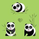 Set of cute pandas. Royalty Free Stock Image