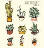 Set of cute potted plants Stock Image