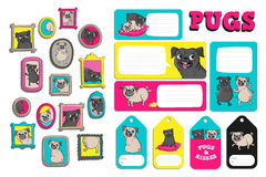 Set with cute pugs. Printable vector cards, notes, stickers and illustrations for your design Royalty Free Stock Photography