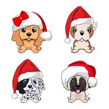Set of cute puppies in red caps with white pompons. Dogs of different breeds Royalty Free Stock Photography