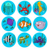 Set of cute  sea animals Stock Photos