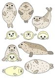 Set of seals parent and child. Set of cute seals parent and child, in various posing stock illustration