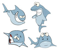 Set of cute sharks for you design. Cartoon Stock Image