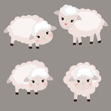 Set of cute sheep. Vector set of cute sheep. Sheep made in cartoon style stock illustration