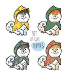 Set of cute siberian husky puppies in colorful raincoats. Vector illustration. Set of four cute siberian husky puppies in colorful raincoats. Vector illustration Stock Photo