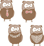 Set of cute sleepy owls Royalty Free Stock Photography