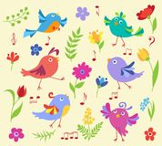 Set of cute spring musical birds Royalty Free Stock Images
