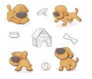 Set of cute teddy dogs vector illustration