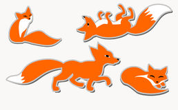 Set of 4 cute vector foxes Royalty Free Stock Images