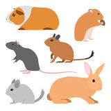 Set of cute vector rodents. Set of cute rodents, vector  small domestic animals cartoon style. pet cavy, hamster, rat, degu, chinchilla, rabbit illustration Stock Images