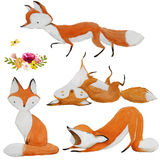Set with cute watercolor fox vector illustration