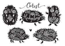 Set of cutest hedgehogs with flowers. Stock Images